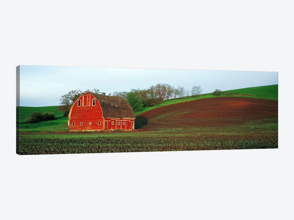 Barn in a field at sunset, Palouse, Whitman County, Washington State, USA #5 by Panoramic Images 1-piece Canvas Art Print