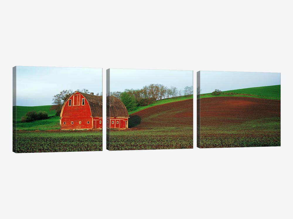 Barn in a field at sunset, Palouse, Whitman County, Washington State, USA #5 by Panoramic Images 3-piece Art Print