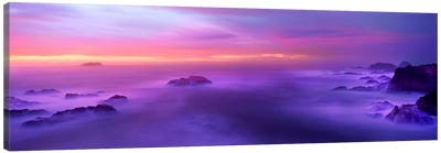 Fog reflected in the sea at sunset Canvas Print #PIM9138