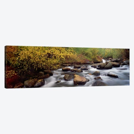 Blurred Motion View Of Water Flowing Through A Stream, Inyo County, California, USA Canvas Print #PIM9155} by Panoramic Images Art Print