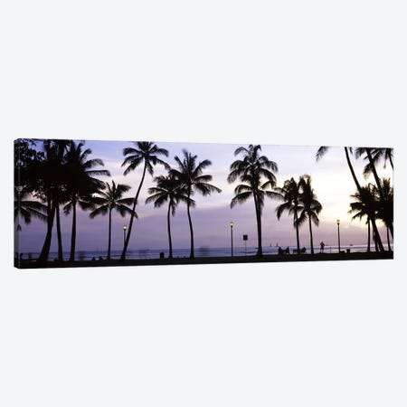 Palm trees on the beach, Waikiki, Honolulu, Oahu, Hawaii, USA Canvas Print #PIM9222} by Panoramic Images Canvas Artwork