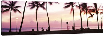 Palm trees on the beach, Waikiki, Honolulu, Oahu, Hawaii, USA #2 Canvas Art Print
