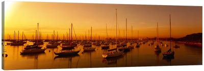 Boats moored at a harbor at dusk, Chicago River, Chicago, Cook County, Illinois, USA Canvas Art Print