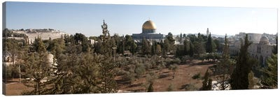 Trees with mosque in the background, Dome Of the Rock, Temple Mount, Jerusalem, Israel Canvas Art Print