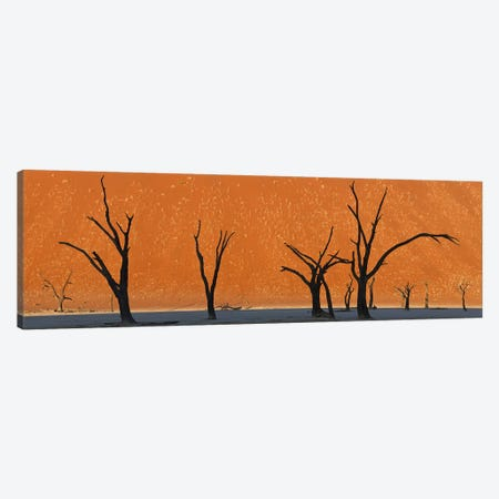 Dead trees by red sand dunes, Dead Vlei, Namib-Naukluft National Park, Namibia Canvas Print #PIM9276} by Panoramic Images Canvas Wall Art