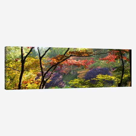 Autumn Landscape, Butchart Gardens, Brentwood Bay, Vancouver Island, British Columbia, Canada Canvas Print #PIM9318} by Panoramic Images Canvas Wall Art