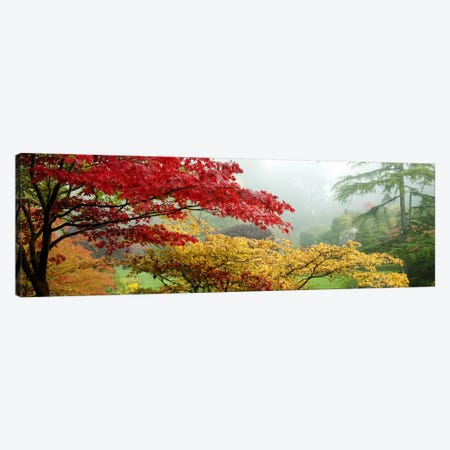 Autumn Landscape II, Butchart Gardens, Brentwood Bay, Vancouver Island, British Columbia, Canada Canvas Print #PIM9319} by Panoramic Images Canvas Artwork