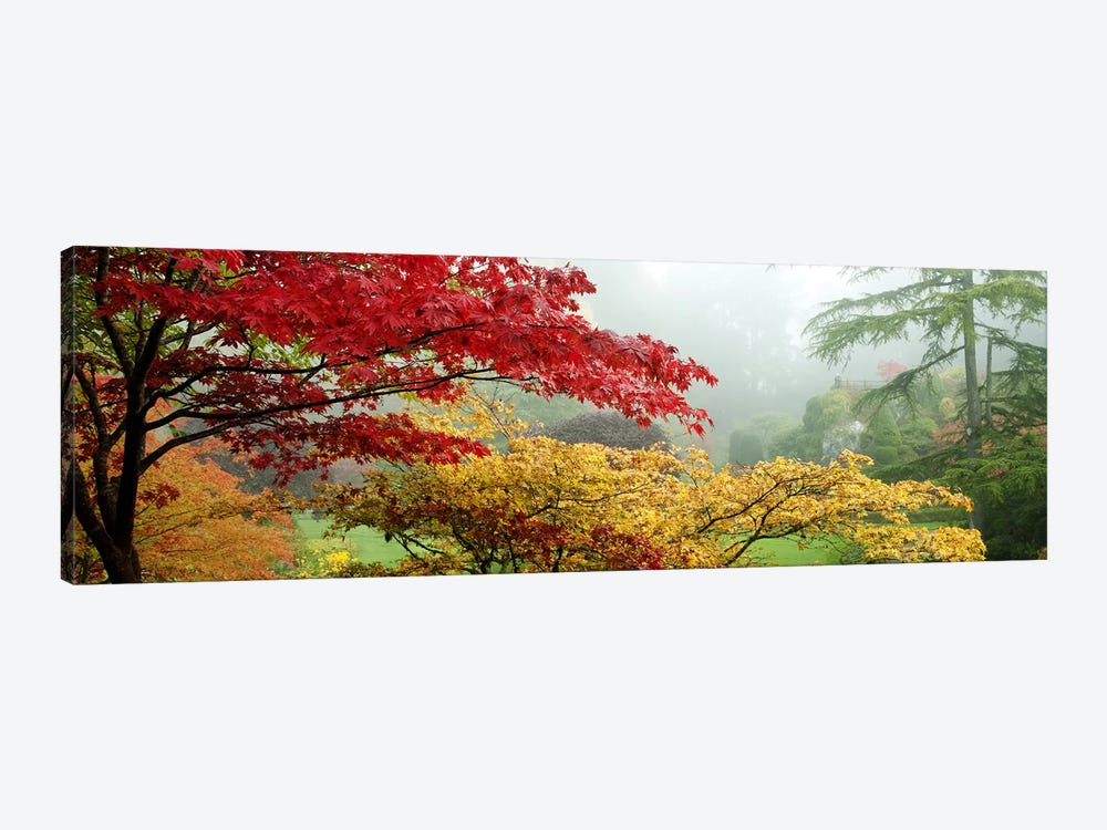Autumn Landscape II, Butchart Gardens, Brentwood Bay, Vancouver Island, British Columbia, Canada by Panoramic Images 1-piece Canvas Art Print
