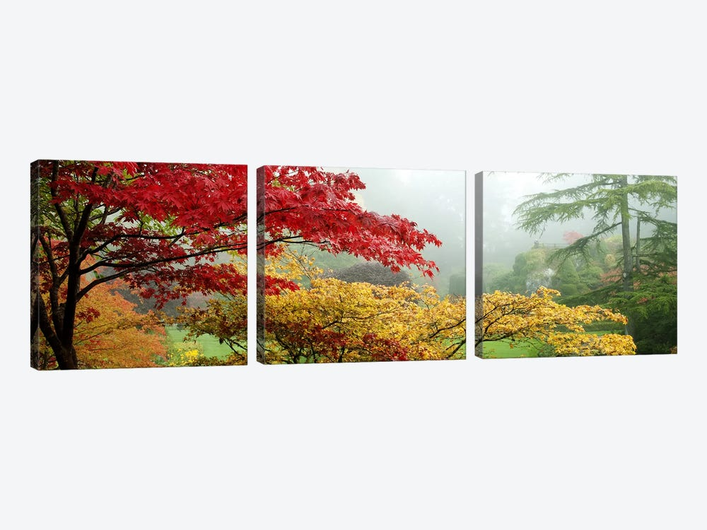 Autumn Landscape II, Butchart Gardens, Brentwood Bay, Vancouver Island, British Columbia, Canada by Panoramic Images 3-piece Canvas Print