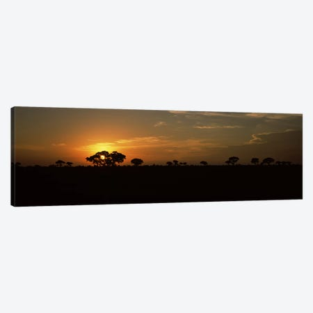 Majestic Sunset Over A Savannah Landscape, Kruger National Park, South Africa Canvas Print #PIM9480} by Panoramic Images Canvas Artwork