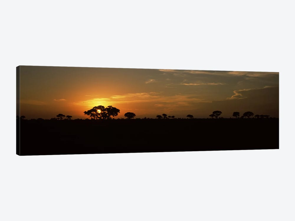 Majestic Sunset Over A Savannah Landscape, Kruger National Park, South Africa by Panoramic Images 1-piece Canvas Wall Art
