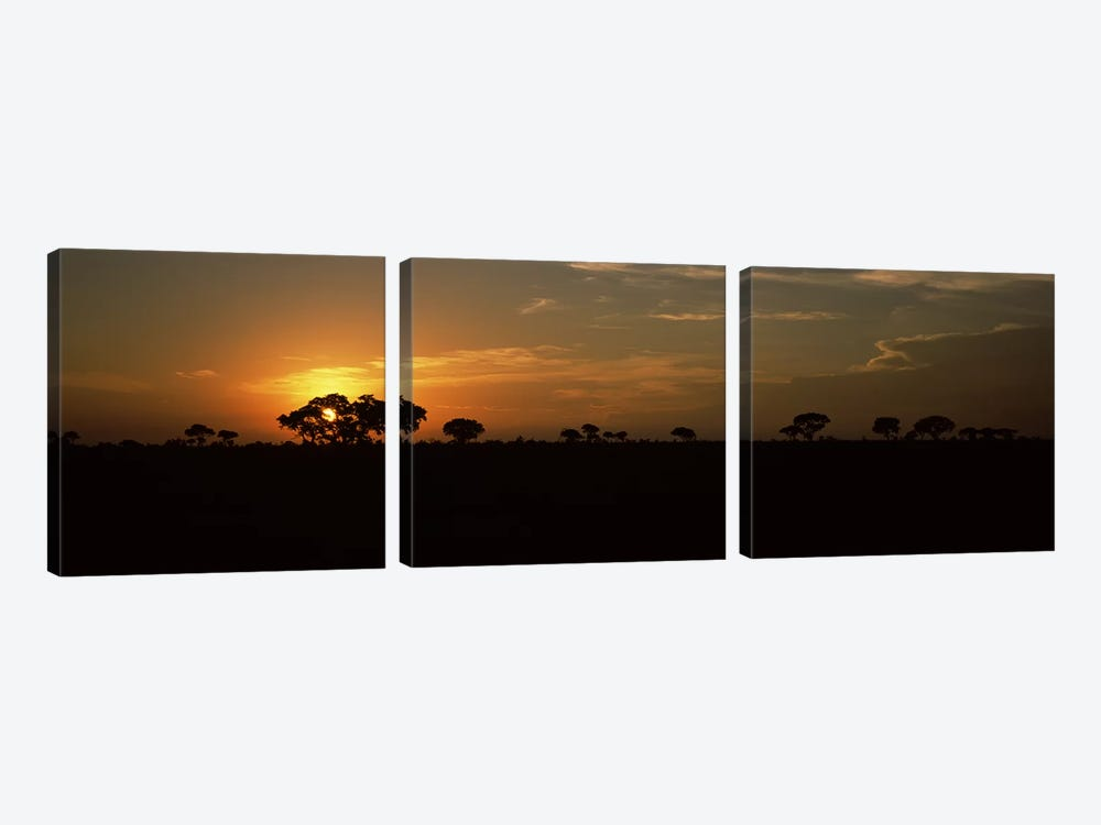 Majestic Sunset Over A Savannah Landscape, Kruger National Park, South Africa by Panoramic Images 3-piece Canvas Art