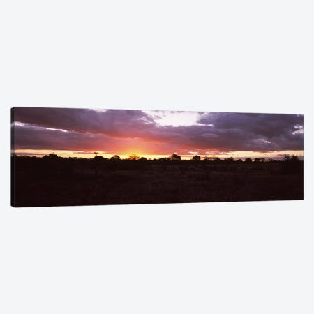 Sunset over the savannah plains, Kruger National Park, South Africa Canvas Print #PIM9481} by Panoramic Images Canvas Wall Art