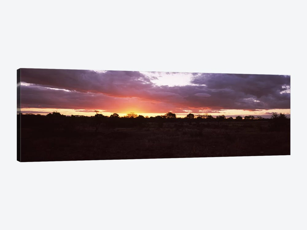 Sunset over the savannah plains, Kruger National Park, South Africa by Panoramic Images 1-piece Art Print