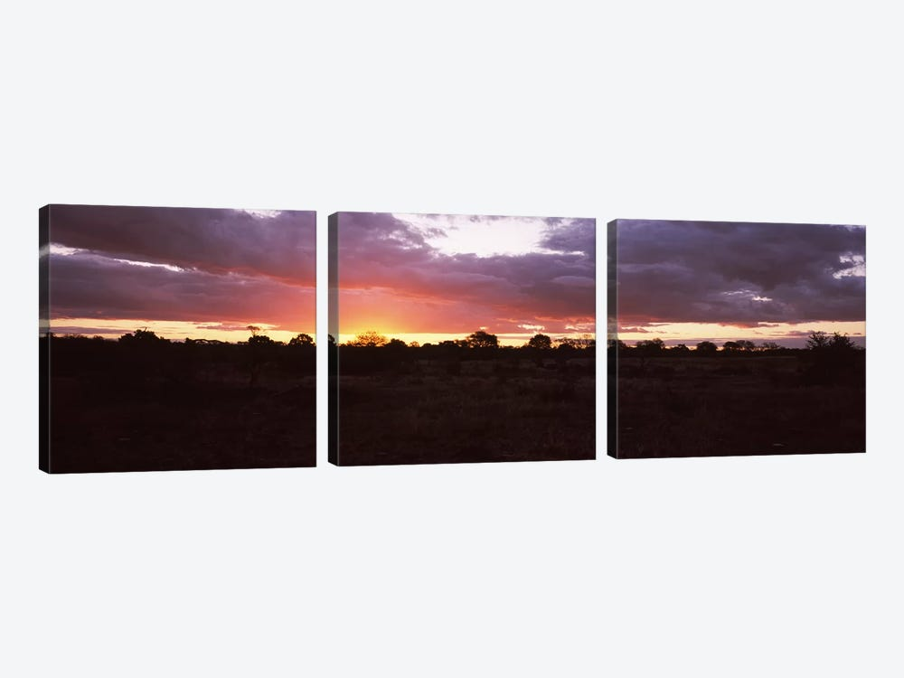 Sunset over the savannah plains, Kruger National Park, South Africa by Panoramic Images 3-piece Art Print