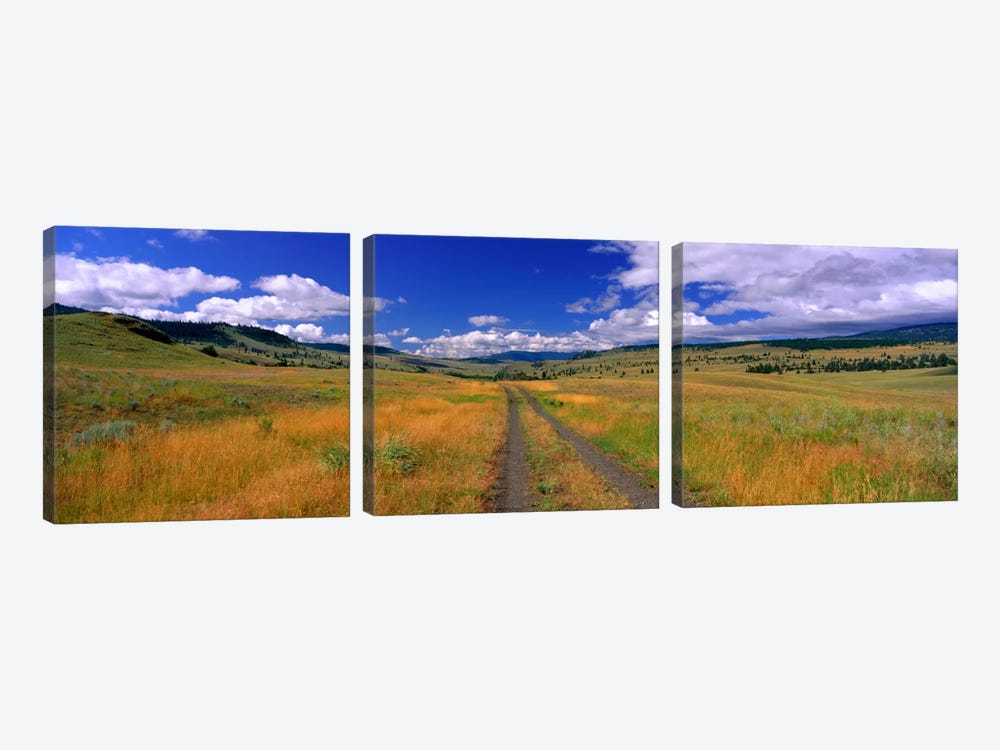 Cattle Ranch Road near Merritt British Columbia Canada by Panoramic Images 3-piece Canvas Art Print