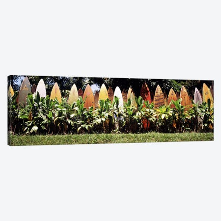 Surfboard fence in a garden, Maui, Hawaii, USA Canvas Print #PIM9563} by Panoramic Images Canvas Art Print