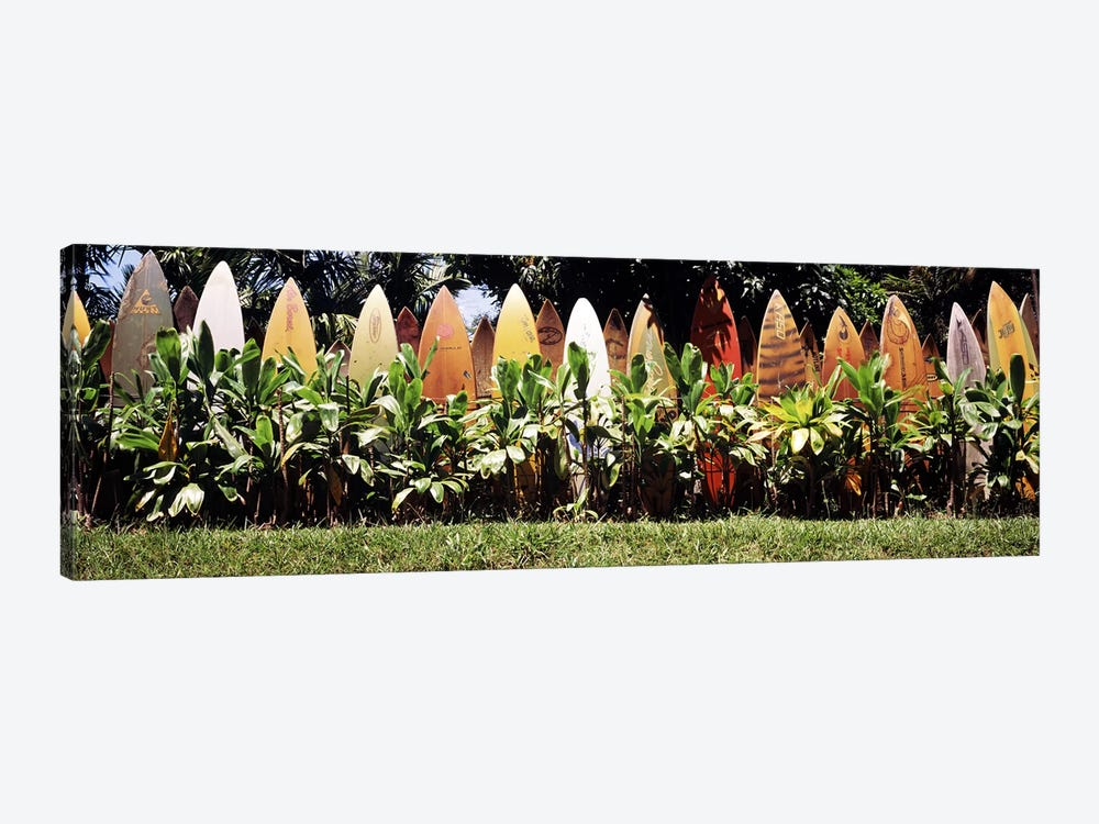 Surfboard fence in a garden, Maui, Hawaii, USA by Panoramic Images 1-piece Canvas Art