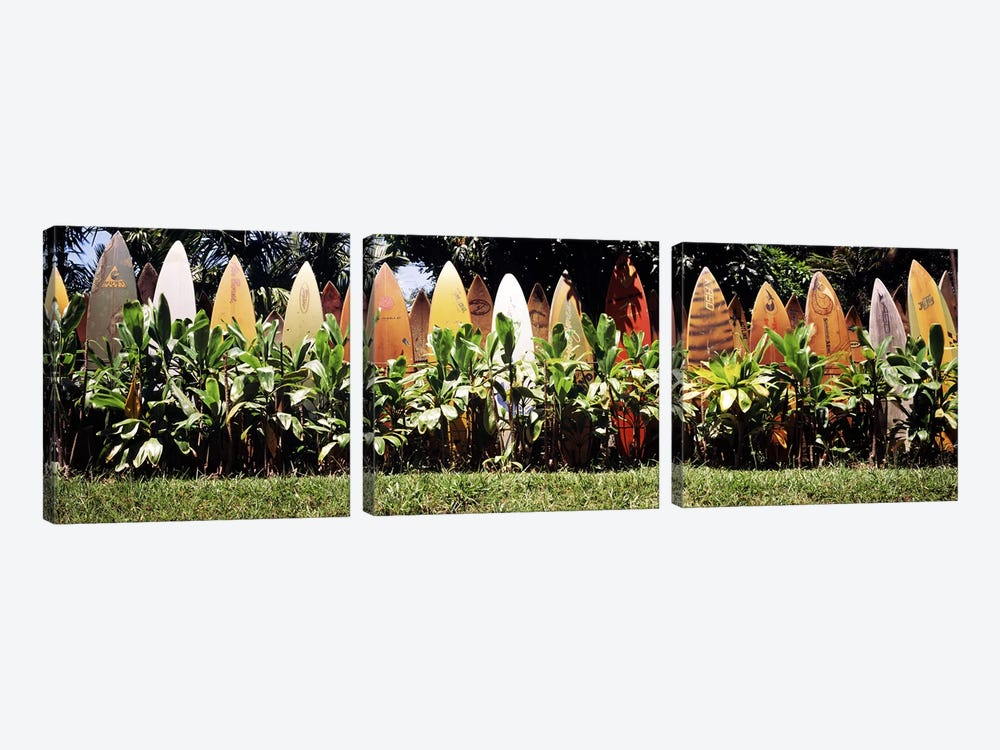 Surfboard fence in a garden, Maui, Hawaii, USA by Panoramic Images 3-piece Canvas Artwork