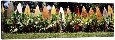 Surfboard fence in a garden, Maui, Hawaii, USA Canvas Art Print