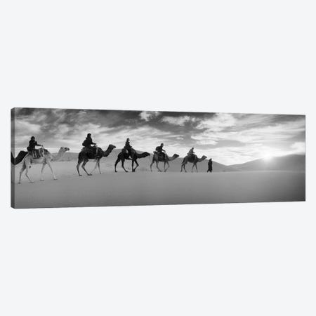 Tourists riding camels through the Sahara Desert landscape led by a Berber man, Morocco Canvas Print #PIM9589} by Panoramic Images Art Print