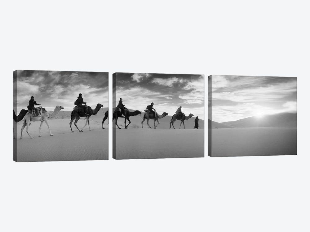 Tourists riding camels through the Sahara Desert landscape led by a Berber man, Morocco by Panoramic Images 3-piece Canvas Artwork