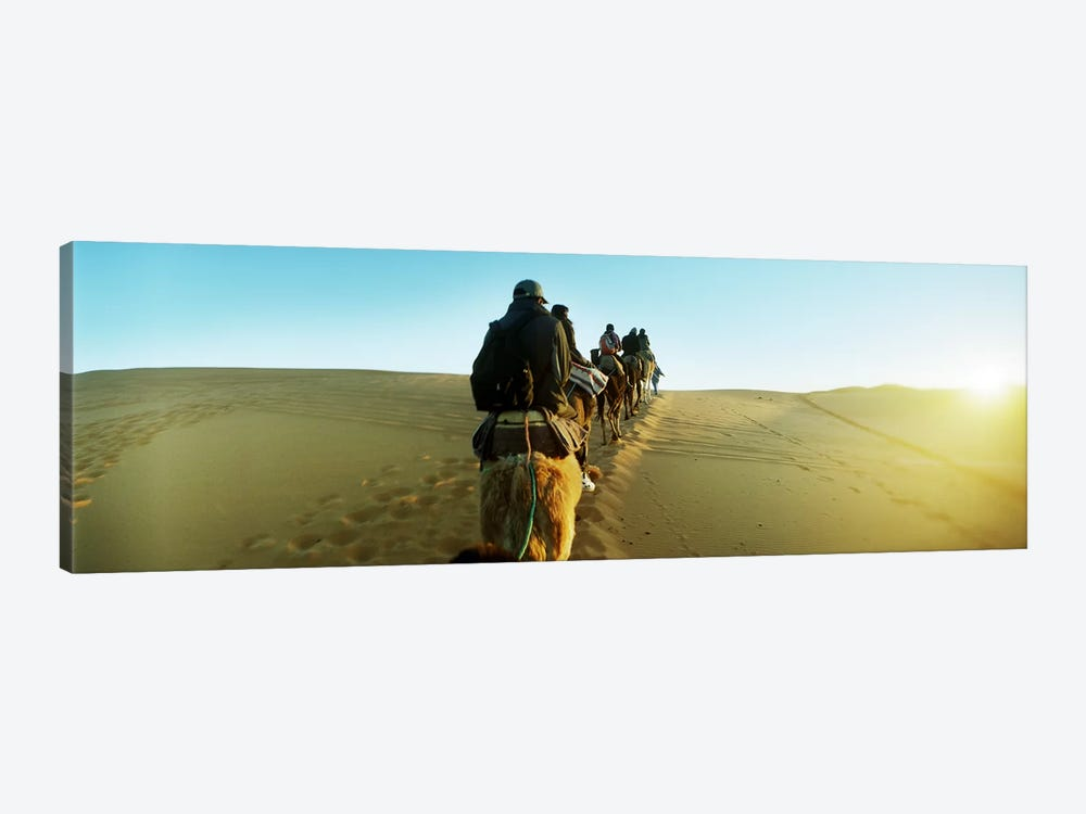 Row of people riding camels through the desert, Sahara Desert, Morocco by Panoramic Images 1-piece Canvas Print