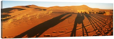 Shadows of camel riders in the desert at sunset, Sahara Desert, Morocco Canvas Art Print