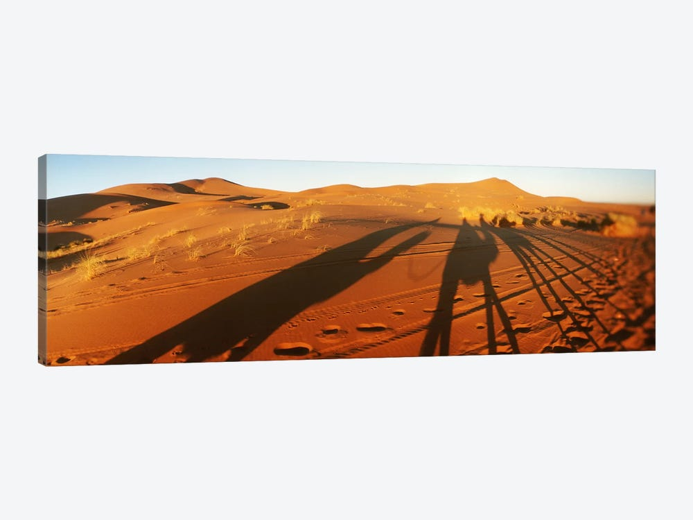 Shadows of camel riders in the desert at sunset, Sahara Desert, Morocco by Panoramic Images 1-piece Canvas Wall Art