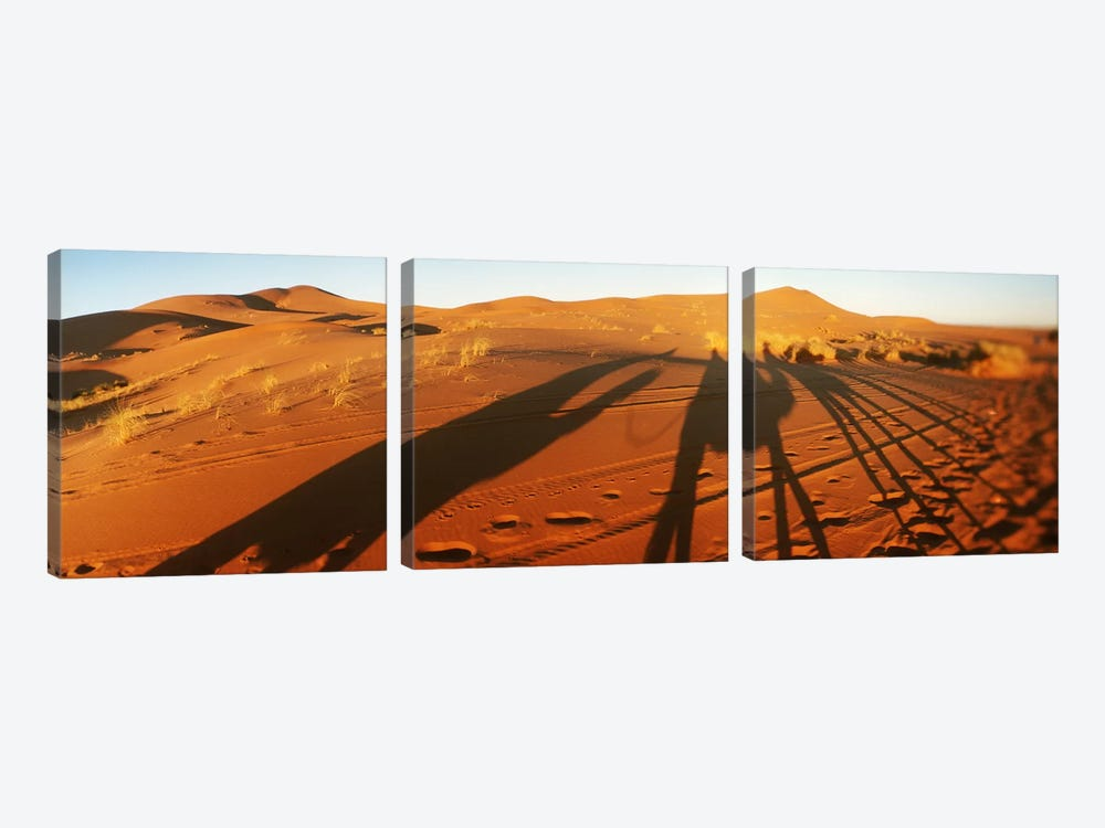 Shadows of camel riders in the desert at sunset, Sahara Desert, Morocco by Panoramic Images 3-piece Canvas Wall Art