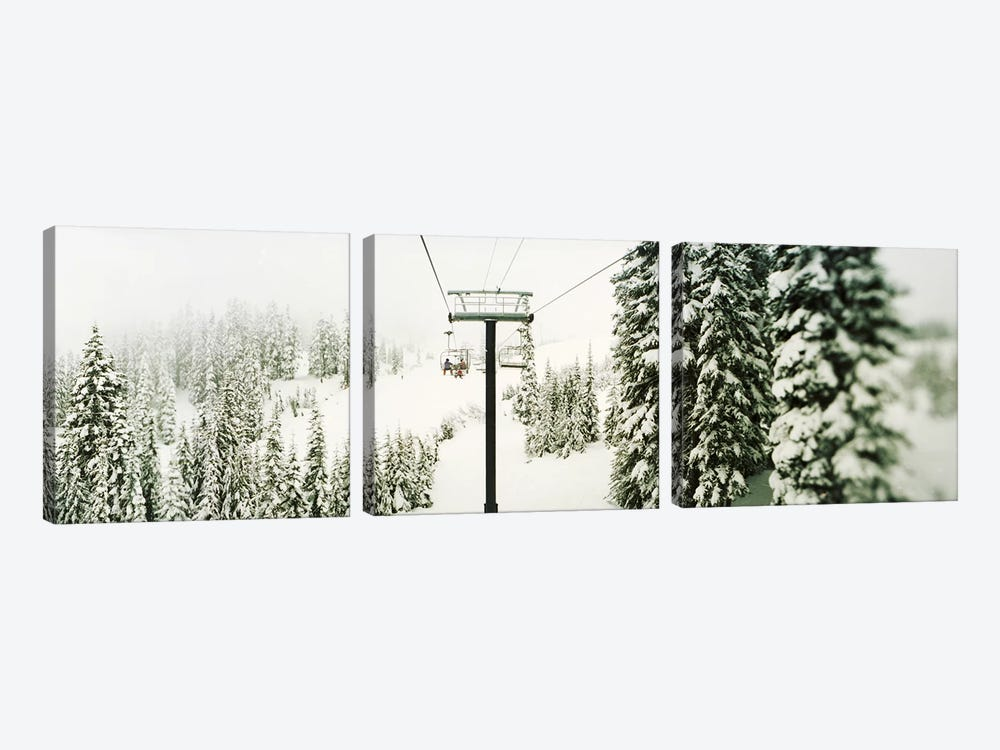 Chair lift and snowy evergreen trees at Stevens PassWashington State, USA by Panoramic Images 3-piece Art Print