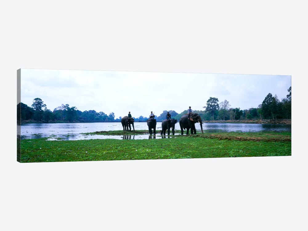 Siem Reap River & Elephants Angkor Vat Cambodia by Panoramic Images 1-piece Canvas Print