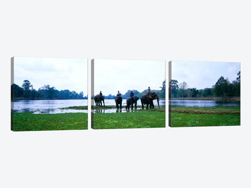 Siem Reap River & Elephants Angkor Vat Cambodia by Panoramic Images 3-piece Art Print