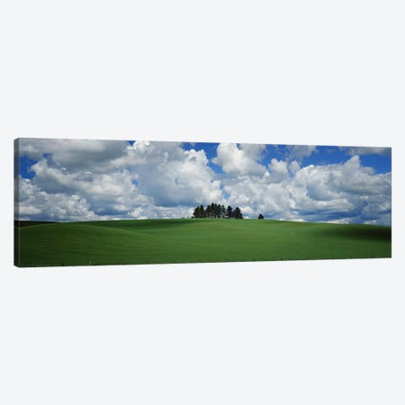 Trees on the top of a hill, Palouse, Whitman County, Washington State, USA Canvas Print #PIM9663} by Panoramic Images Canvas Artwork