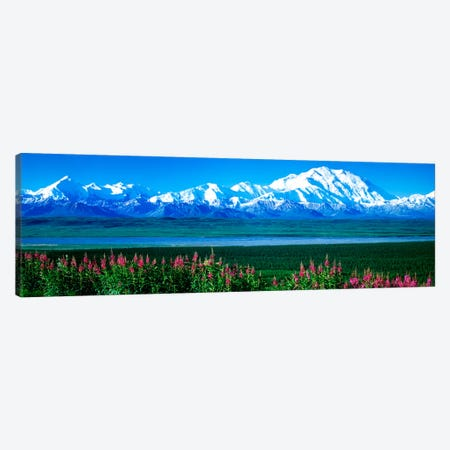 Mountains & Lake Denali National Park AK USA Canvas Print #PIM966} by Panoramic Images Canvas Artwork