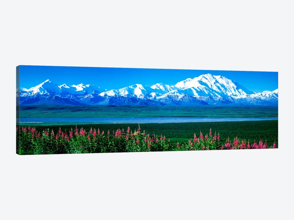 Mountains & Lake Denali National Park AK USA by Panoramic Images 1-piece Canvas Art