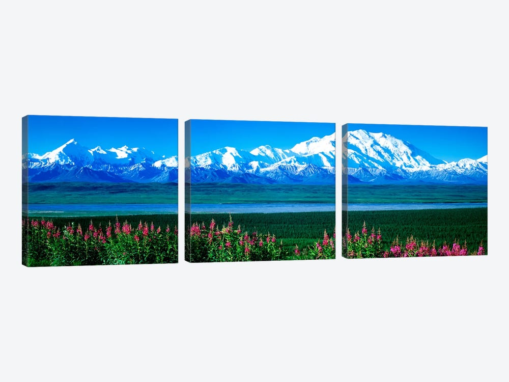 Mountains & Lake Denali National Park AK USA by Panoramic Images 3-piece Canvas Artwork