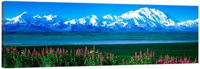 Mountains & Lake Denali National Park AK USA Canvas Art Print