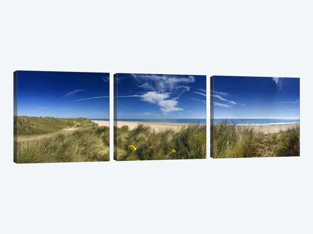 Marram Grassdunes and beach, Winterton-on-Sea, Norfolk, England by Panoramic Images 3-piece Canvas Art Print