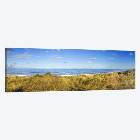 Grass on the beachHorsey Beach, Norfolk, England Canvas Print #PIM9733} by Panoramic Images Canvas Wall Art