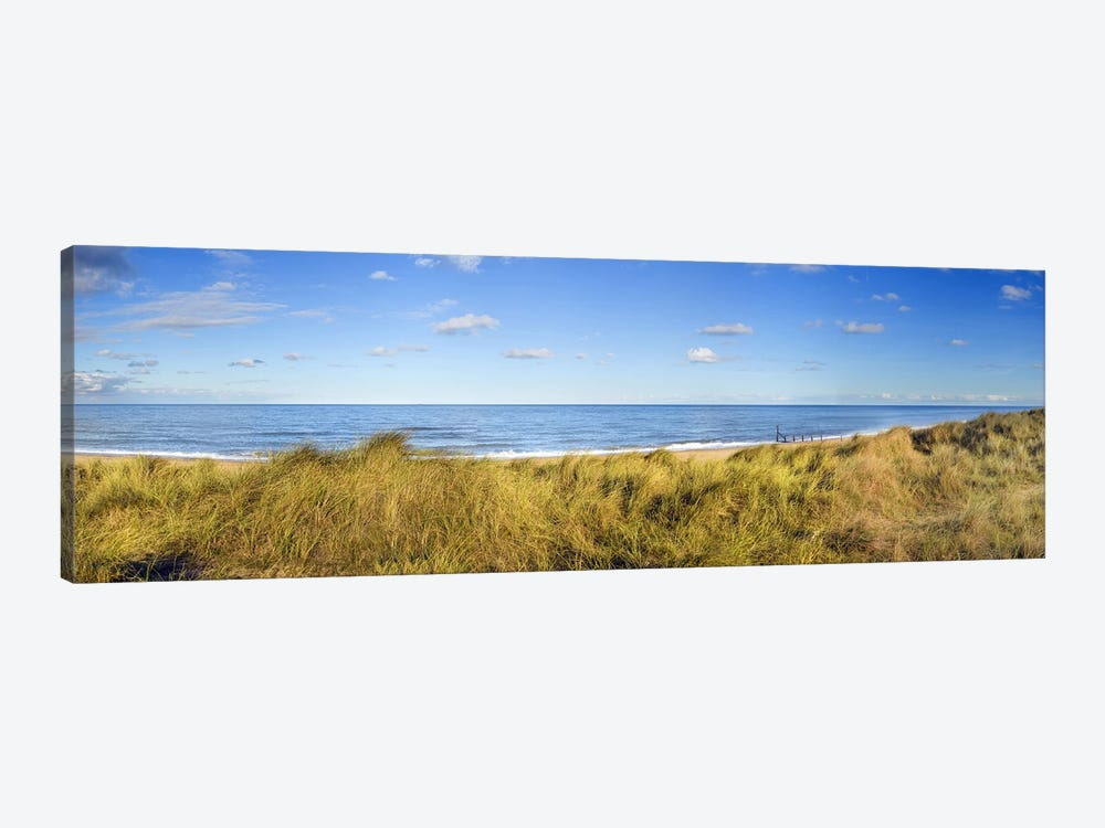Grass on the beachHorsey Beach, Norfolk, England by Panoramic Images 1-piece Canvas Artwork