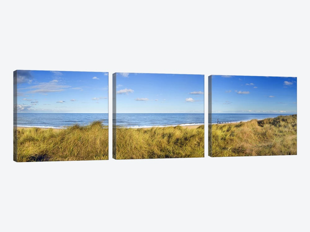 Grass on the beachHorsey Beach, Norfolk, England by Panoramic Images 3-piece Canvas Artwork
