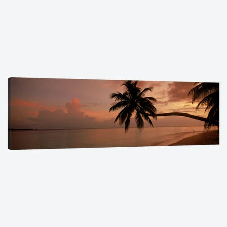 Silhouette of palm trees on the beach at sunriseFihalhohi Island, Maldives Canvas Print #PIM9770} by Panoramic Images Canvas Wall Art