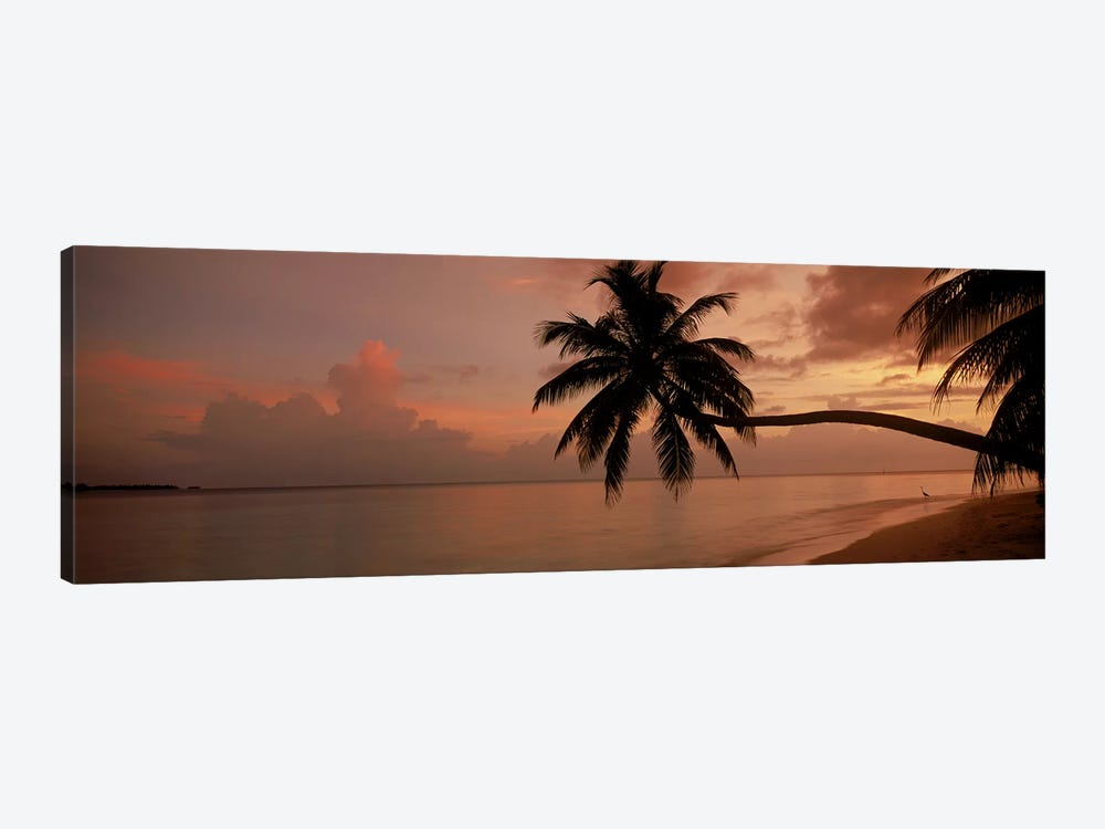 Silhouette of palm trees on the beach at sunriseFihalhohi Island, Maldives by Panoramic Images 1-piece Art Print
