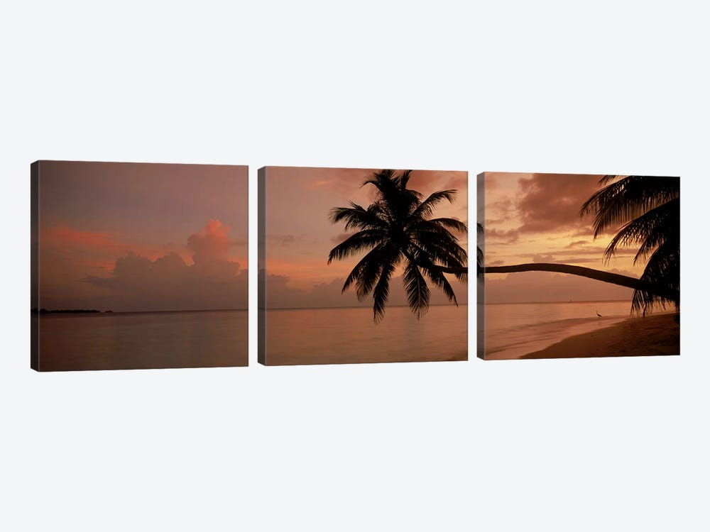 Silhouette of palm trees on the beach at sunriseFihalhohi Island, Maldives by Panoramic Images 3-piece Canvas Art Print