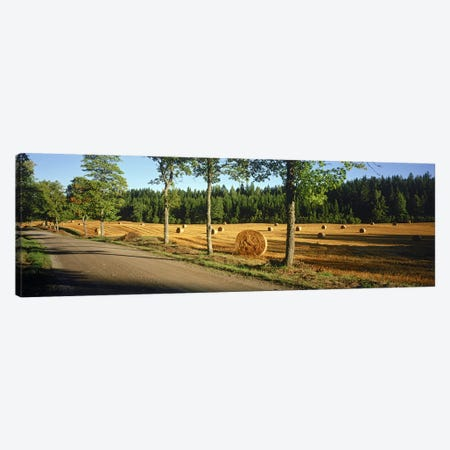 Hay bales in a field, Flens, Sweden Canvas Print #PIM9796} by Panoramic Images Art Print