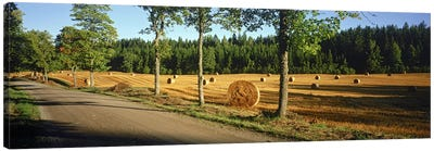 Hay bales in a field, Flens, Sweden Canvas Art Print