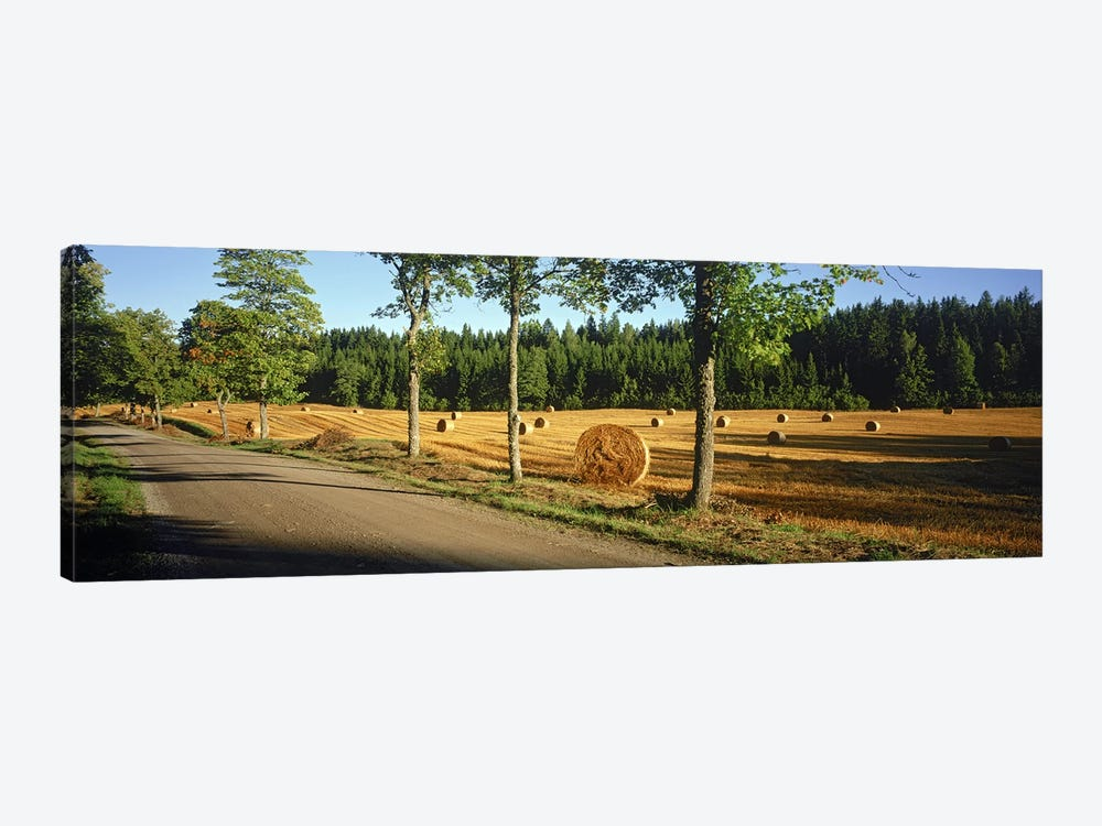 Hay bales in a field, Flens, Sweden 1-piece Art Print