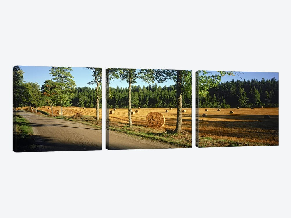 Hay bales in a field, Flens, Sweden 3-piece Canvas Art Print