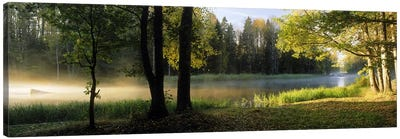 Morning Mist Rising from The Dal River In A Forest Landscape, Sweden Canvas Art Print